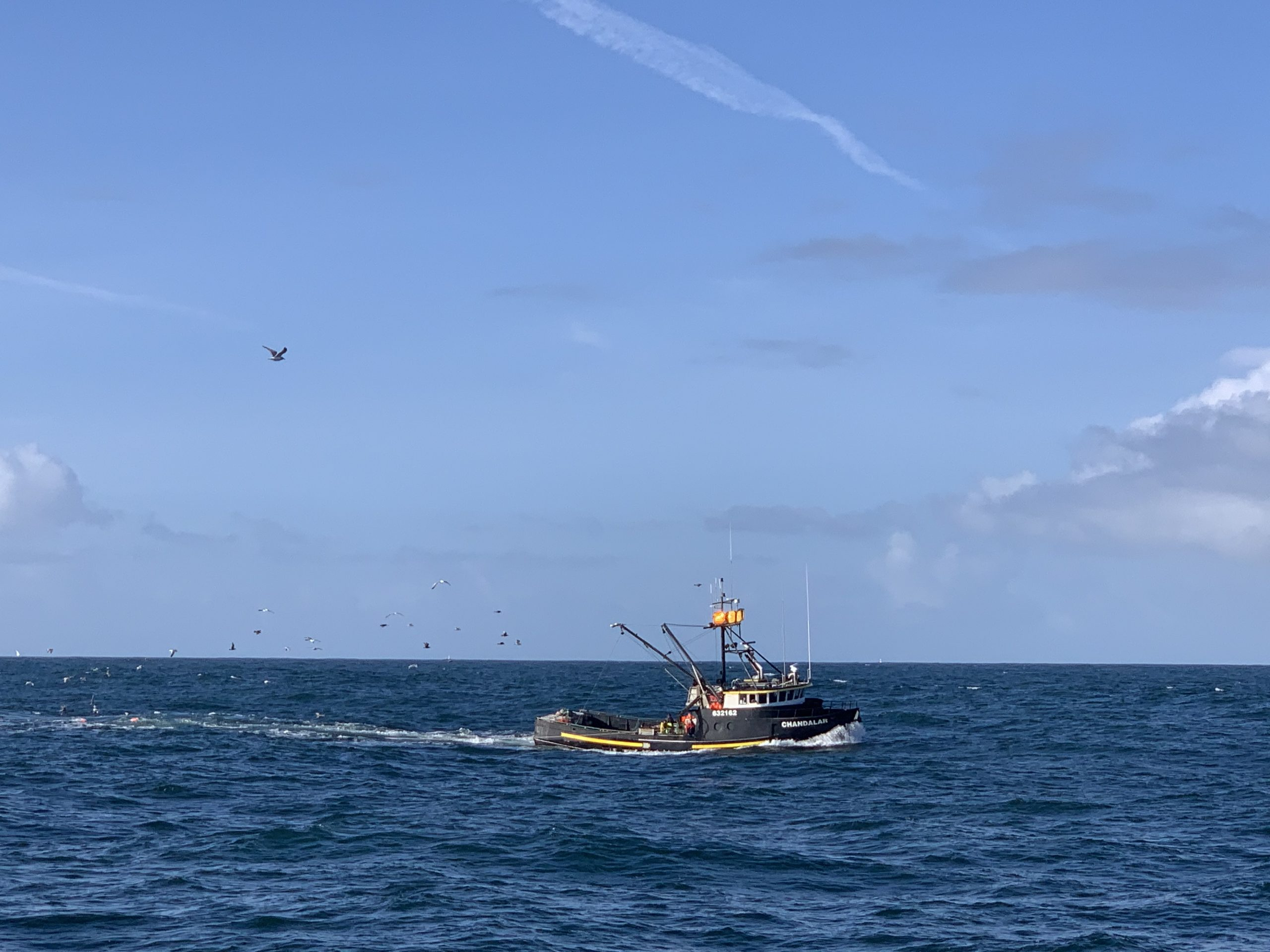 Alaska Fishery Management
